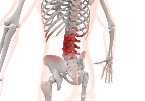 茨木からだ整骨院 つらい腰痛の箇所